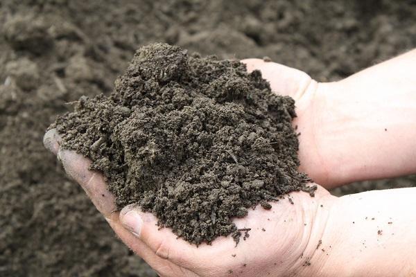 Silt Soil Silt particles ...