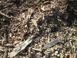Rough Wood Chips
